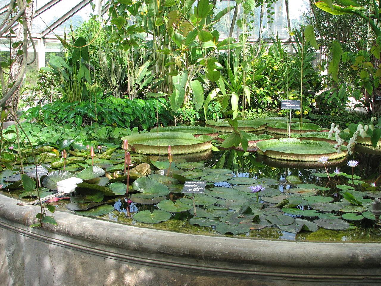Sitios tur sticos en francia viajar a francia for Jardin botanico en sevilla