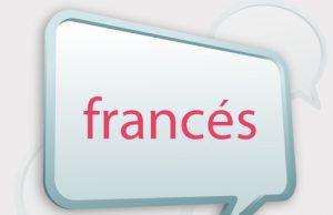 Idioma de Francia