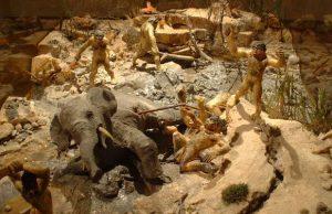 Museo de Paleontología Humana de Amada Tierra